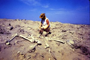That's my mom cataloging bones at a dig site